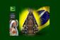 Nossa Senhora Aparecida – Padroeira doBrasil